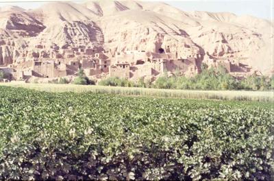 Bamiyan-cave-dwellings.jpg